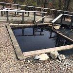 The Doctor Pool at Ngawha Springs