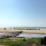 Dunes Holiday Village