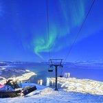 Narvikfjellet LNorthern Lights