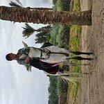 Reiten am Strand zwischen Palmen