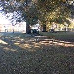 Confederate Park Memphis TN