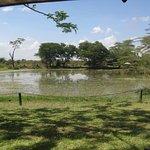 Voyager Ziwani, Tsavo West foto