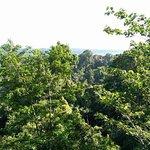 Natur-Observatorium Foto