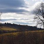 Glasbern Inn - Fogelsville / Allentown Foto