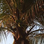 Фотография Novela Muine Resort & Spa