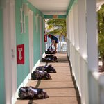 Leave your bag outside the resort room and Reef Divers will make sure your bag gets on the boat.