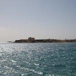Photo de Beach Albatros Sharm
