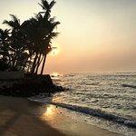 Photo of Beach Inns