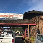 World's Largest Redwood Station 2017
