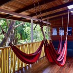 Hammocks for junior suites.