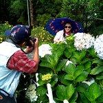 People enjoyed taking photos