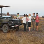 Game drive and sundowners