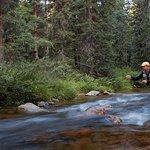 Foto de BEST WESTERN Alpenglo Lodge
