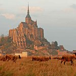 Photo de Hotel Mercure Mont Saint Michel