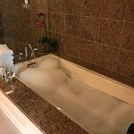 Presidential Suite Jetted Bathtub & sep Shower w Spa Jets