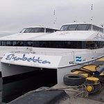 Catamaranes Canoero