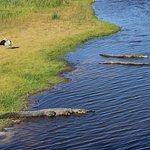 Myakka River State Park