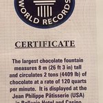 The Guinness World Records certificate