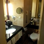 Very small bathroom, no separate shower, cheap hair dryer (room 160)
