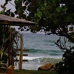 Mahi-mahi salad and a view