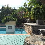 Bella Visa private guest pool surrounded by stone work and beautiful native floral