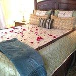Monarch Cove Inn Foto