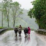 Foto di Vietnam Easy Rider