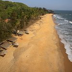 An aerial perspective of peace and tranquility by Sai Vishram Beach!
