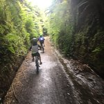 Photo de Hauraki Rail Trail - Day Rides