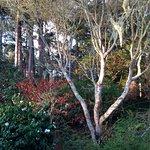 Billede af Inverness Secret Garden Cottage