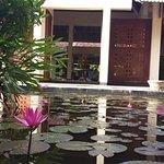 Zdjęcie The Palms Hotel