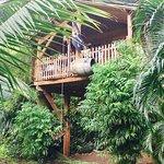 Photo de West Indies Cottage