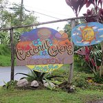 "Coconut Glen""s"