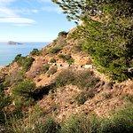 Photo of Parque Natural de la Serra Gelada