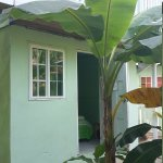 Photo of Hostal Mar e Iguana