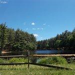 Lorraine Park Campground Foto