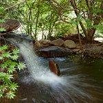 Waterfall in the garden= peace in the soul