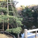 Meiji Shrine Imperial Garden