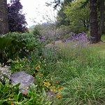 Azalea Park, Brookings, OR
