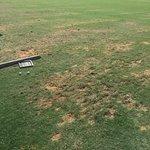 Saadiyat Beach Golf Club Foto