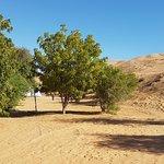 Photo de Al Raha Camp