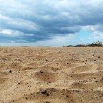 Foto de Playa del Matorral