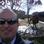 Me and the Camels