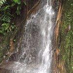 Pequeña caida de agua...agua deliciosa fria y fresca