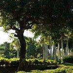 Paradisus Punta Cana ภาพถ่าย