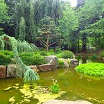 Photo de Jardin Japonais