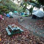 Morning at campground