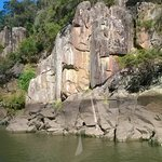Tamar river cruise the face rock see what faces you see and look for the Elephant head