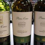 Perez Cruz wines tasted