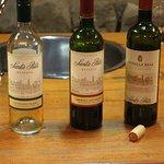 Santa Rita wines tasted